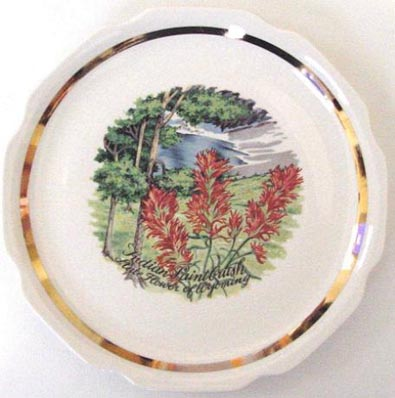 Indian Paintbrush - State Flower of Wyoming - Plate Front
