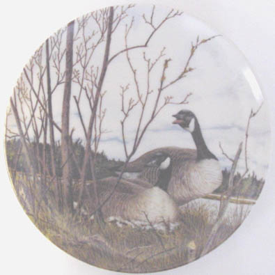 Nesting - by David Pentz - Plate Front