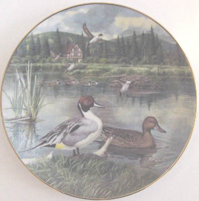 The Pintail - by Bart Jerner - Plate Front