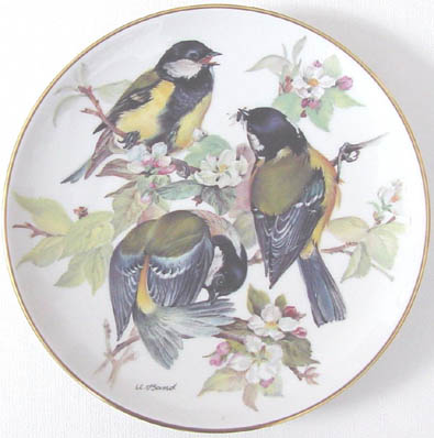 Kohlmeise - Great Tit - by Ursula Band - Plate Front