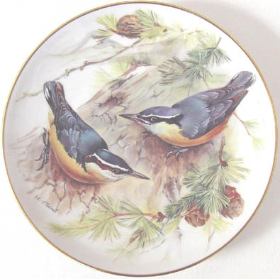 Korsikanischer Kleiber - Corsican Nuthatch - by Ursula Band - Plate Front