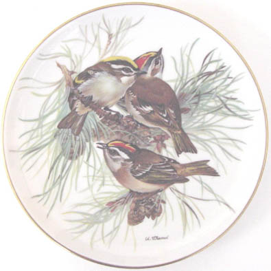 Sommergoldhahnchen - Firecrest - by Ursula Band - Plate Front