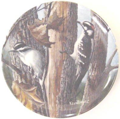 The Downy Woodpecker - by Kevin Daniel - Plate Front